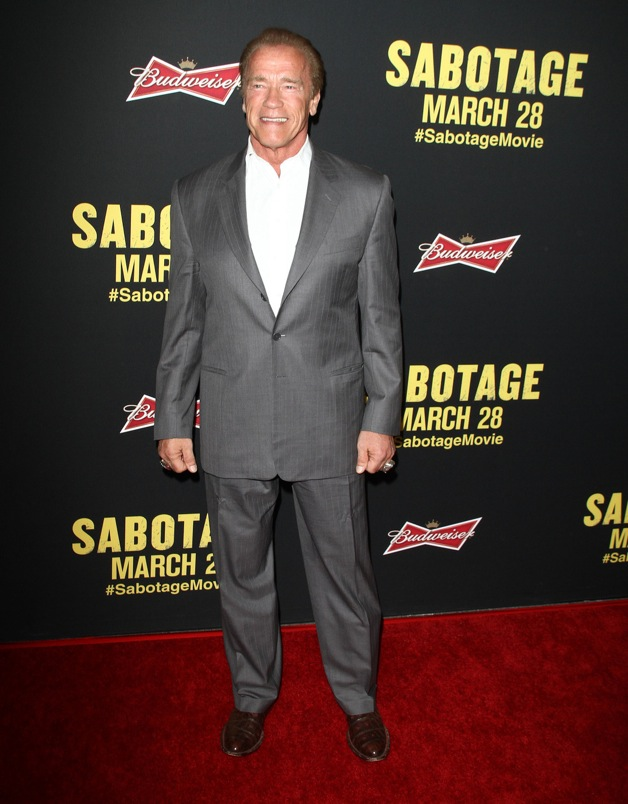 Arnold Schwarzenegger attends the premiere of 'Sabotage' in LA